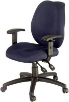 Ergonomic and Computer Chairs